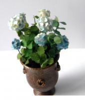 Hortensia bleu pale1