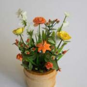 miniatures-fleurs8.jpg